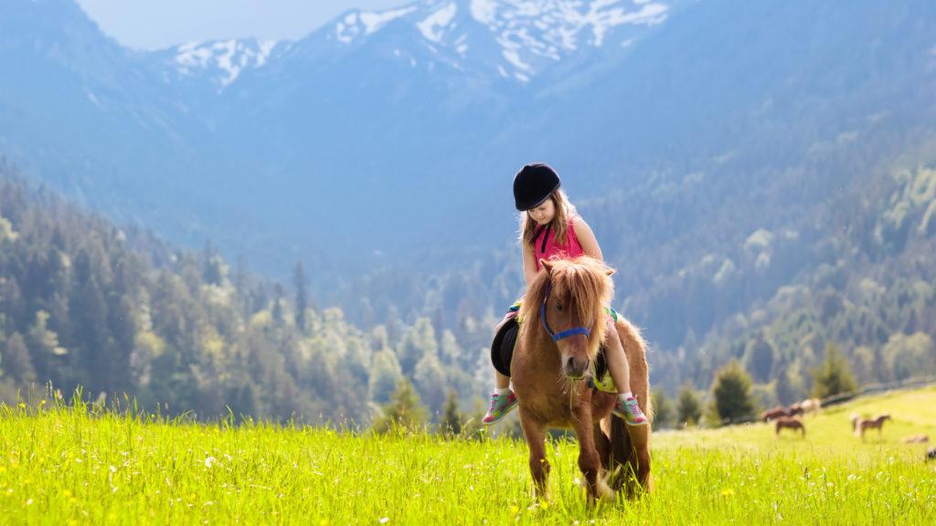 Randonnées à cheval dans les Alpes