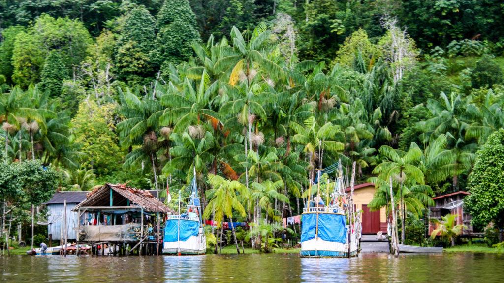 Parc National de la Guyane