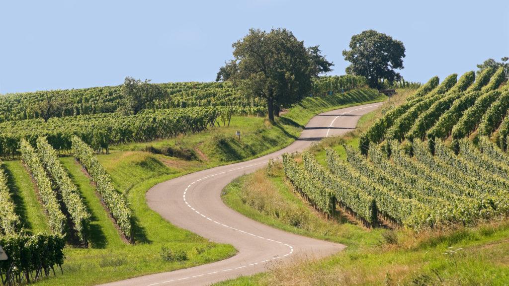 Sur la rout des vins d'Alsace