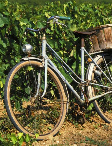 voie verte de Bourgogne du sud