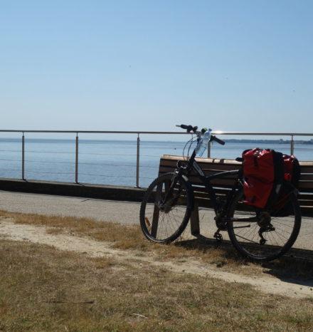 Cyclo (3)