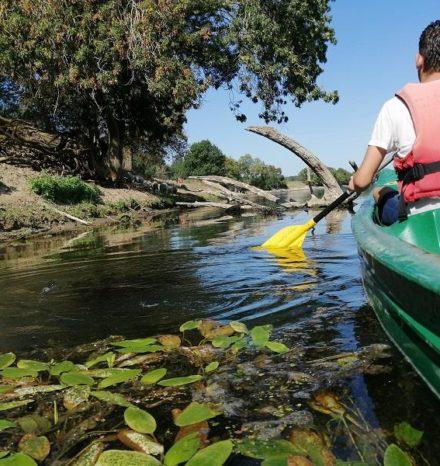 canoe 3 bord de loire