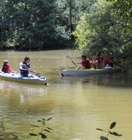 canoe tournesols