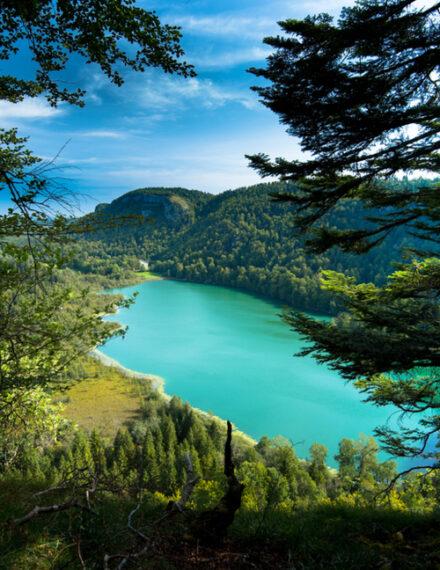 Lac Bonlieu dans le jura