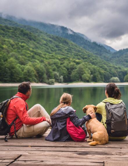 Emmener son chien en vacances