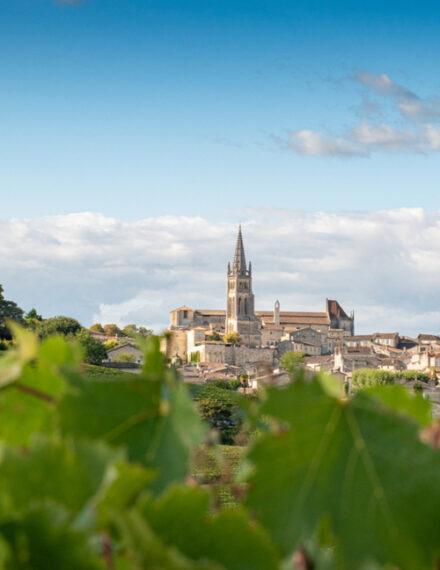Vignes et village de Saint-Émilion