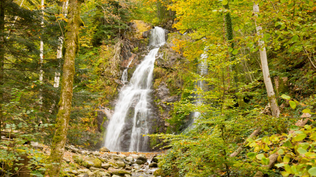 La cascade de Tendon