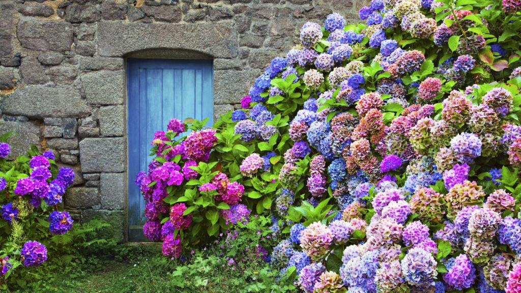 Bretagne intérieure