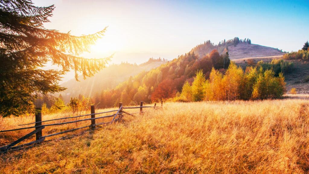 Douceur d'un paysage d'automne