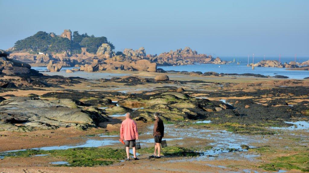 Pêche à pied en Bretagne