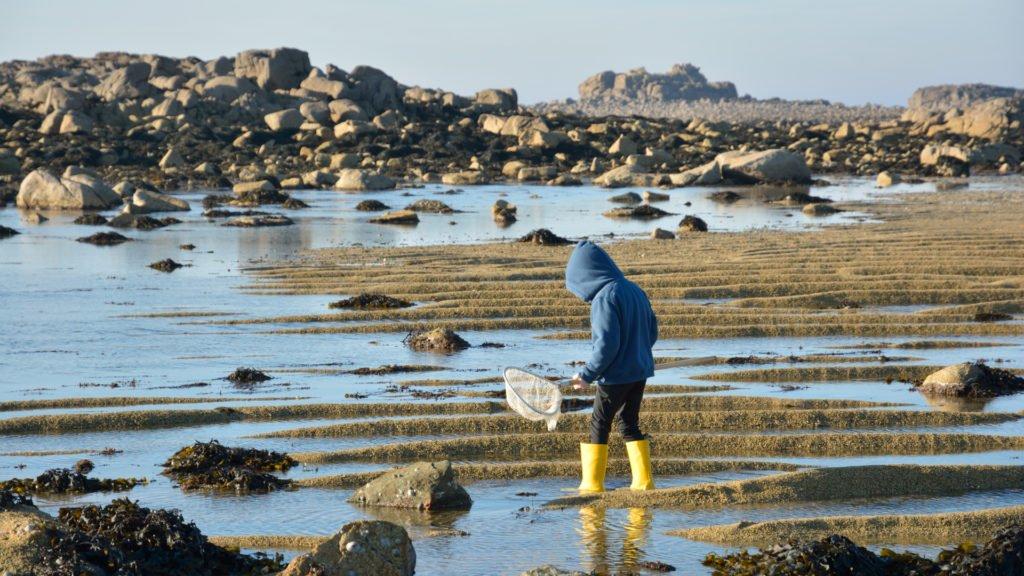 Pêche à pied pratiqué par un jeune garçon