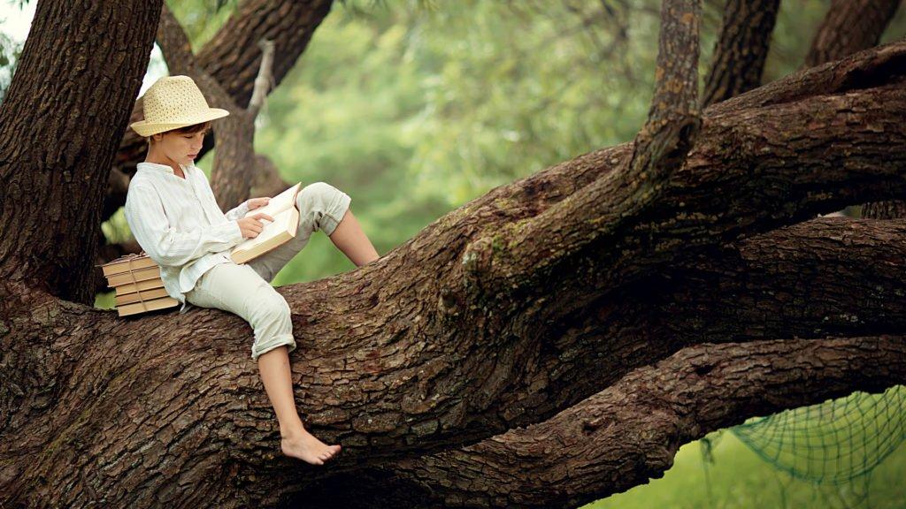 Lecture dans les arbres