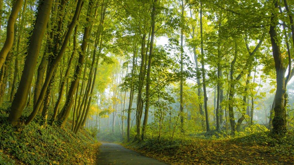 pour un accès responsable à la nature en période de confinement