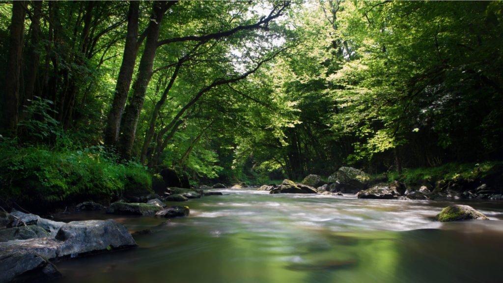 Rivière en Dordogne
