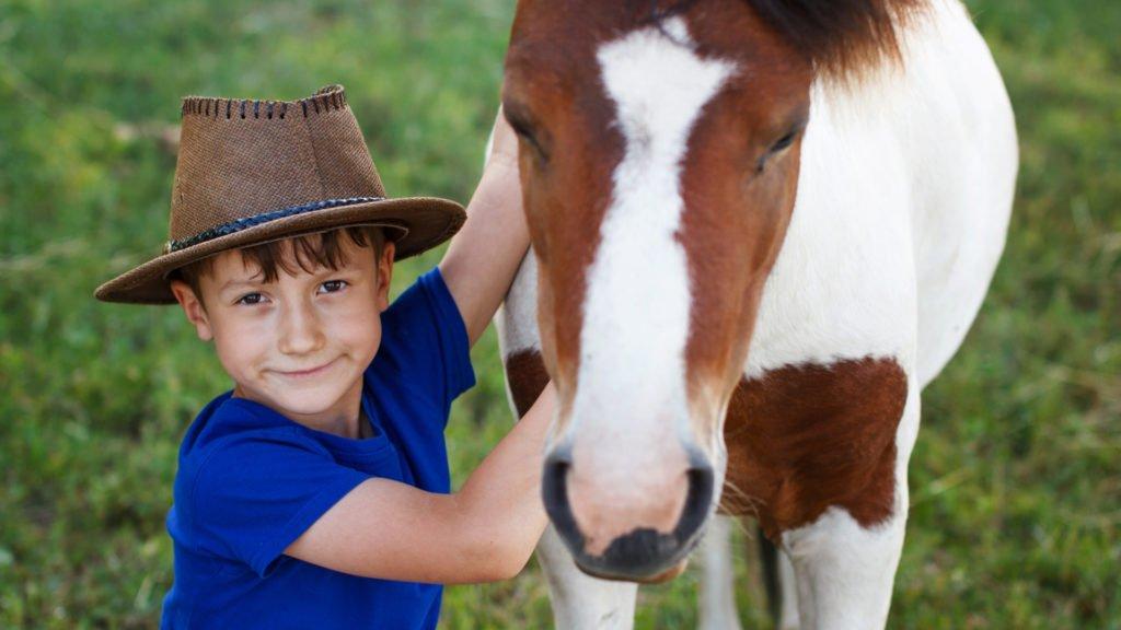 garçon et poney dans une ferme