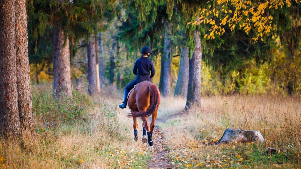 Adolescente partant dans la forêt à cheval