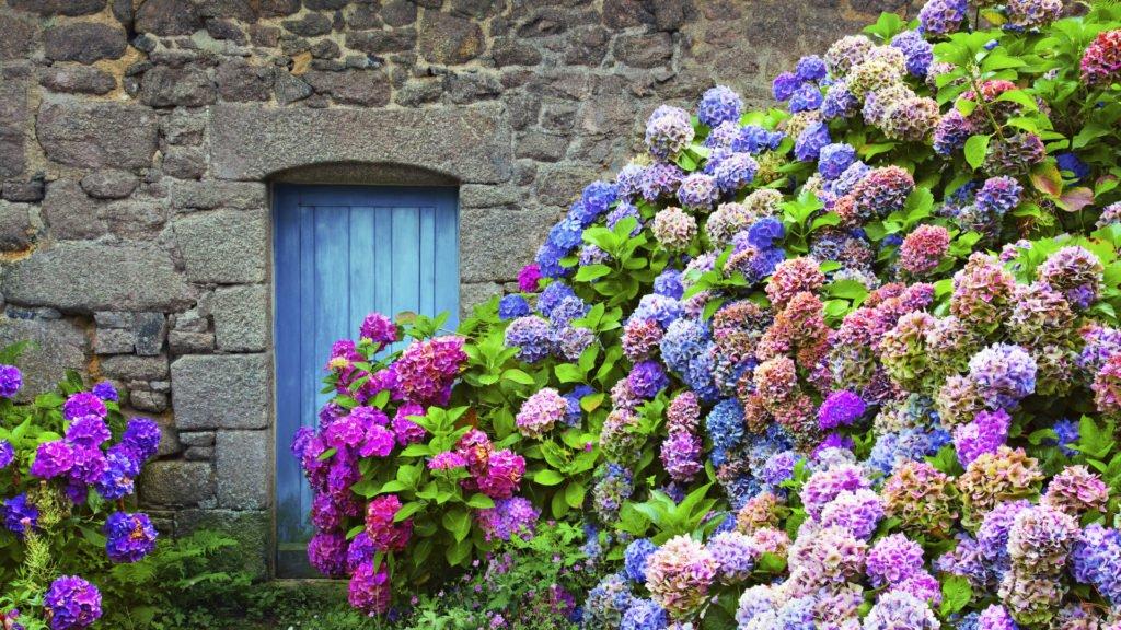 Maison en Bretagne