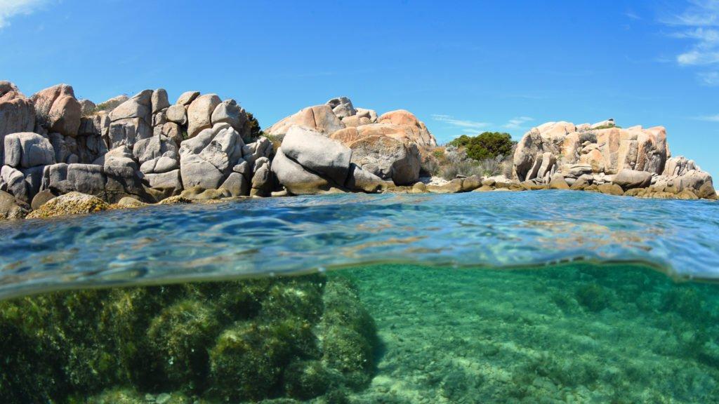 Plongée aux Îles Lavezzi